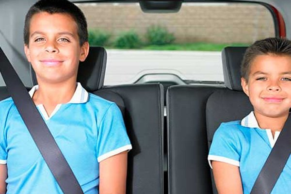 two boys wearing seat belt in a car