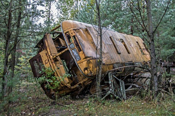 old school bus in the wood