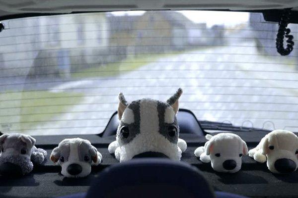dog toys in a car