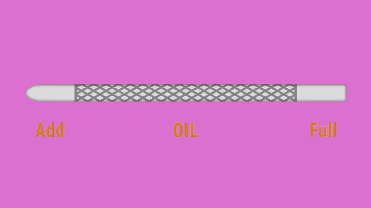 an oil dipstick