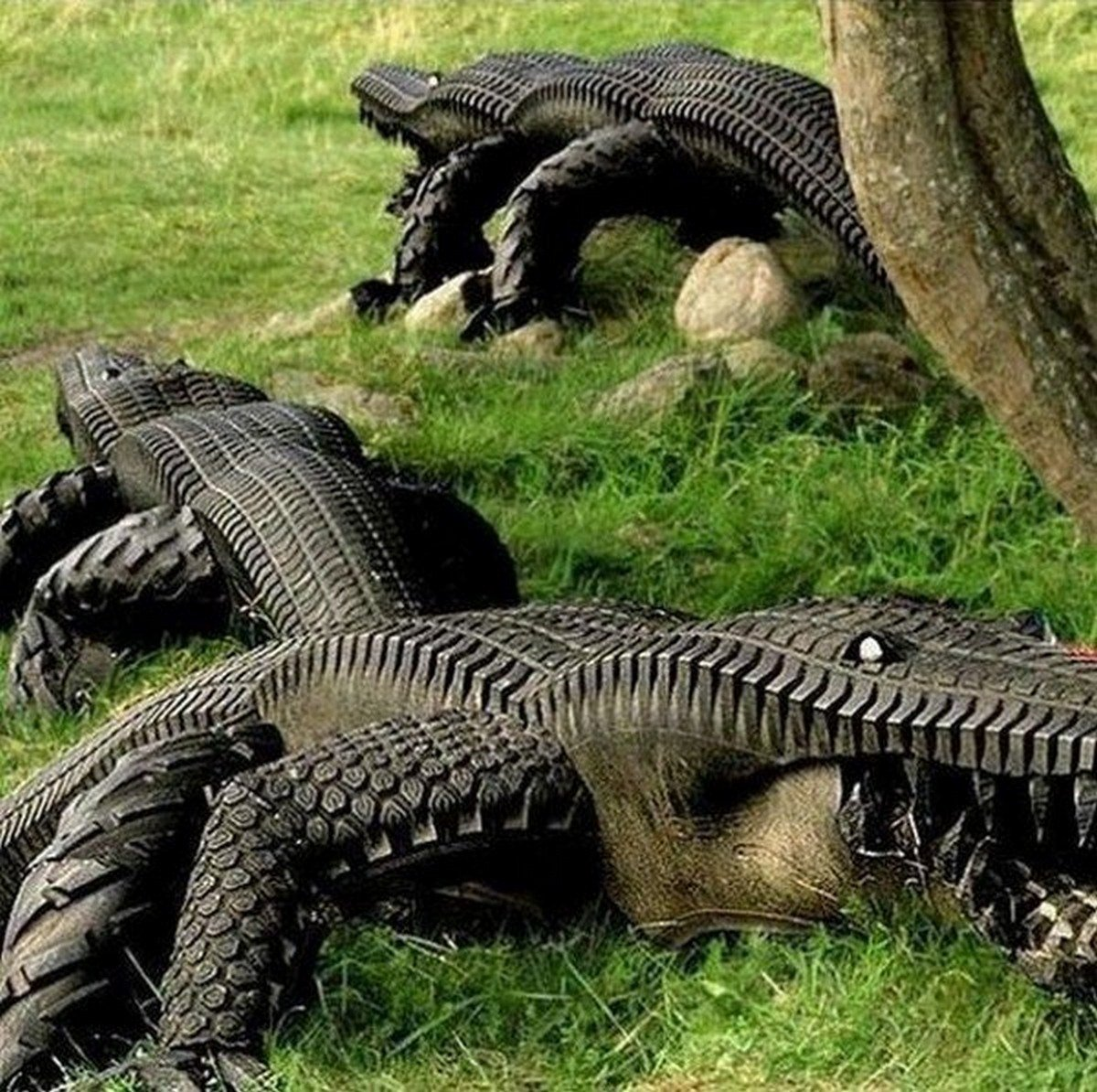 Crocodiles from tyres