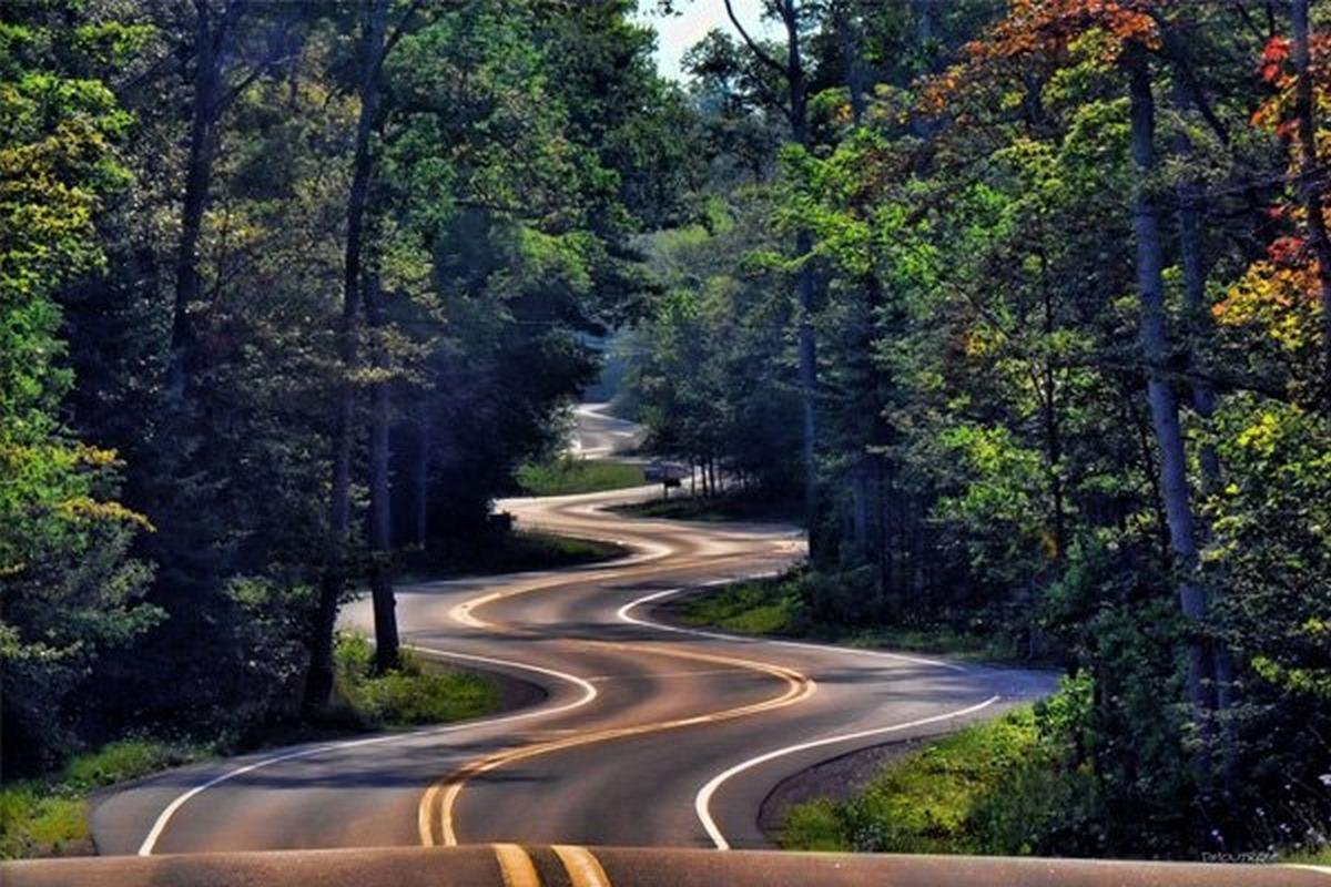 driving in curvy roads image 1
