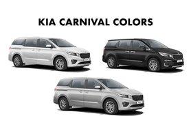 2020 Kia Carnival color option