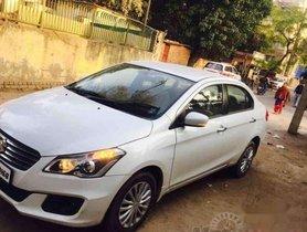 2015 Maruti Suzuki Ciaz for sale at low price