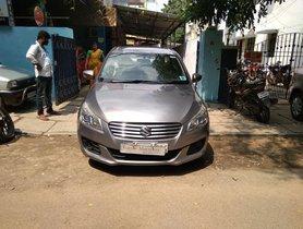 2014 Maruti Suzuki Ciaz for sale at low price