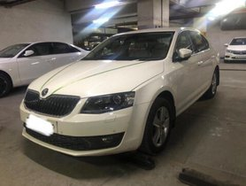 Used Skoda Octavia 2016 car at low price