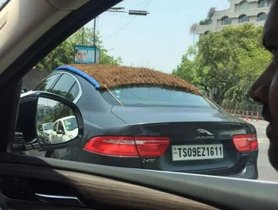 Jaguar XE Spotted Wearing A Thatched Roof Under The Scorching Sun