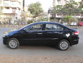 Maruti Ciaz ZXi Option MT for sale
