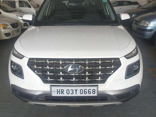 Hyundai Venue S Turbo DCT, 2019, Petrol AT in Panchkula