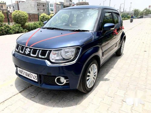 2019 Maruti Suzuki Ignis 1.2 Delta MT for sale in Gurgaon-4