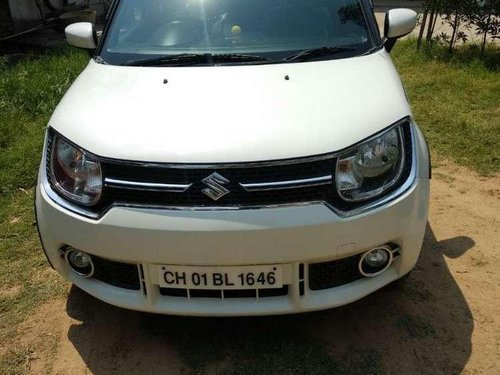 Maruti Suzuki Ignis 2017 MT for sale in Chandigarh