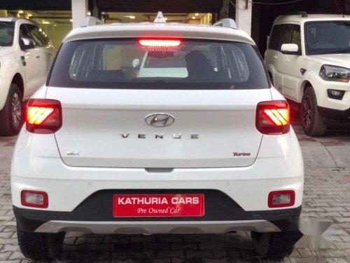 Hyundai Venue SX Plus Turbo DCT, 2019, Petrol AT in Patiala