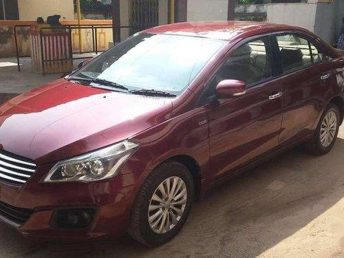 2015 Maruti Suzuki Ciaz MT for sale in Madurai