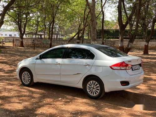 Used Maruti Suzuki Ciaz 2015 MT for sale in Bhilai